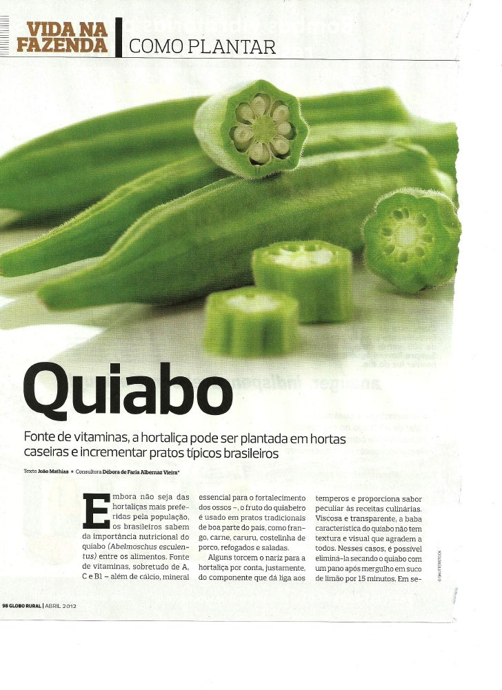 Como Plantar - Quiabo