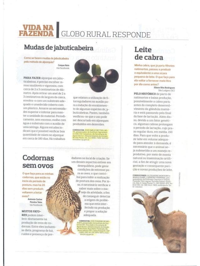 Globo Rural Responde - Dezembro 2