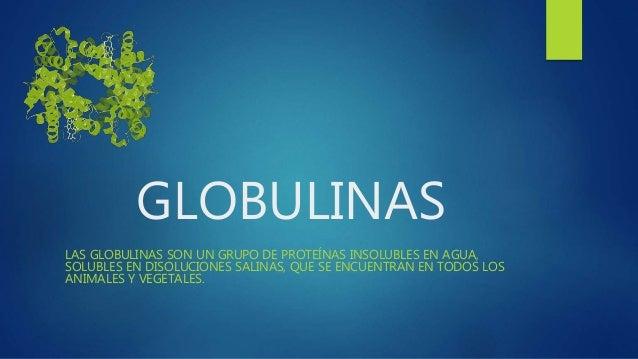 GLOBULINAS LAS GLOBULINAS SON UN GRUPO DE PROTEÍNAS INSOLUBLES EN AGUA, SOLUBLES EN DISOLUCIONES SALINAS, QUE SE ENCUENTRA...