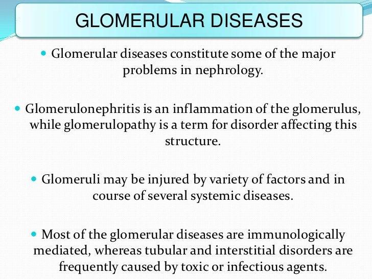 GLOMERULAR DISEASES     Glomerular diseases constitute some of the major                  problems in nephrology. Glomer...