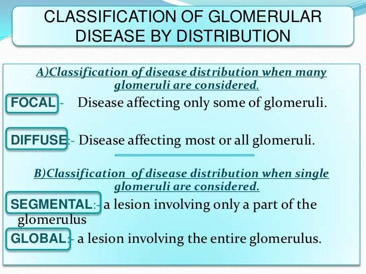 CLASSIFICATION OF GLOMERULAR        DISEASE BY DISTRIBUTION    A)Classification of disease distribution when many         ...
