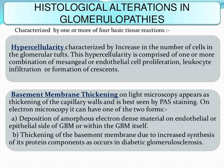 HISTOLOGICAL ALTERATIONS IN             GLOMERULOPATHIES  Characterized by one or more of four basic tissue reactions :- H...