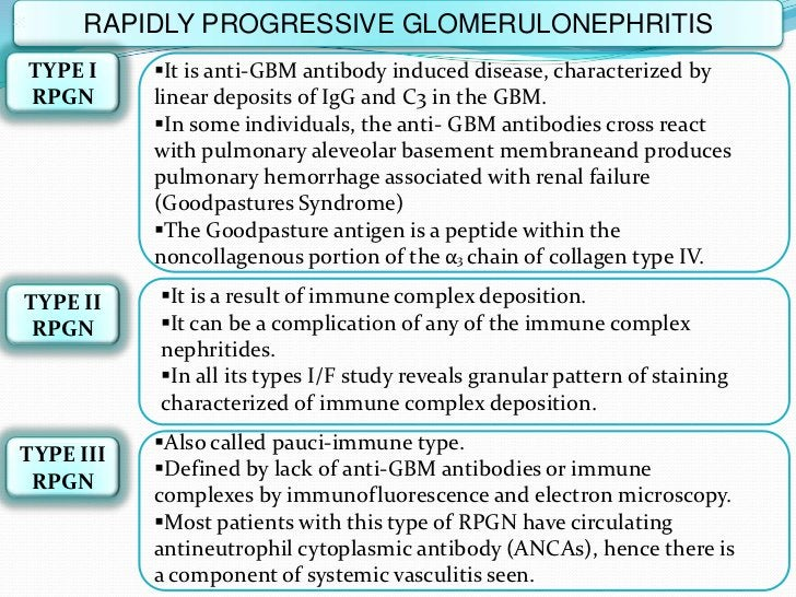 RAPIDLY PROGRESSIVE GLOMERULONEPHRITISTYPE I     It is anti-GBM antibody induced disease, characterized byRPGN       line...