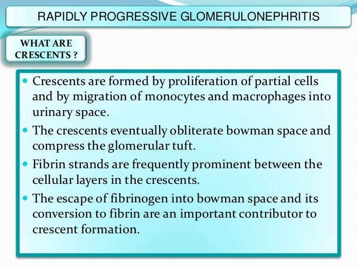 RAPIDLY PROGRESSIVE GLOMERULONEPHRITIS WHAT ARECRESCENTS ?  Crescents are formed by proliferation of partial cells   and ...