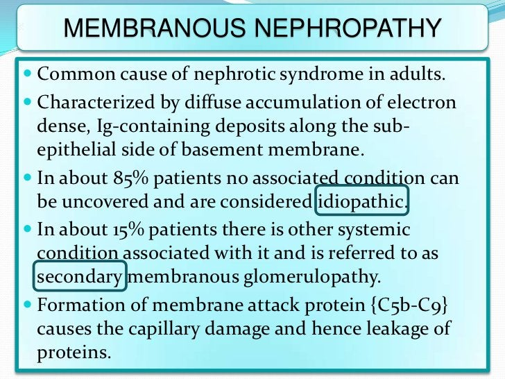 MEMBRANOUS NEPHROPATHY Common cause of nephrotic syndrome in adults. Characterized by diffuse accumulation of electron  ...