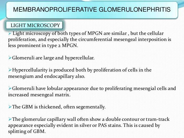MEMBRANOPROLIFERATIVE GLOMERULONEPHRITIS LIGHT MICROSCOPY Light microscopy of both types of MPGN are similar , but the ce...