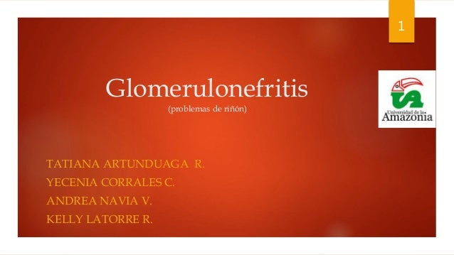 Glomerulonefritis (problemas de riñón) TATIANA ARTUNDUAGA R. YECENIA CORRALES C. ANDREA NAVIA V. KELLY LATORRE R. 1