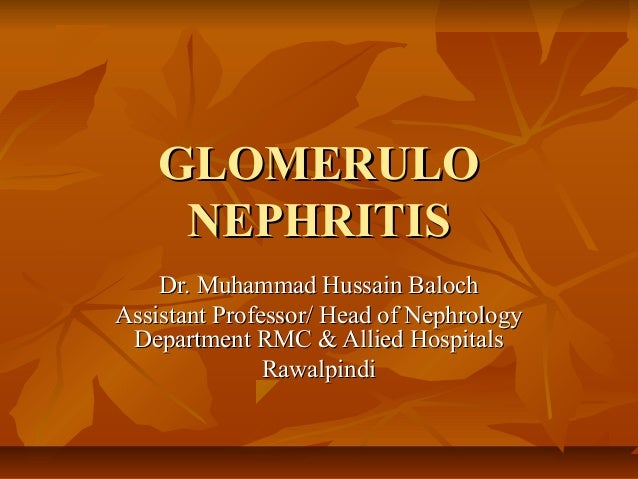 GLOMERULO NEPHRITIS Dr. Muhammad Hussain Baloch Assistant Professor/ Head of Nephrology Department RMC & Allied Hospitals ...