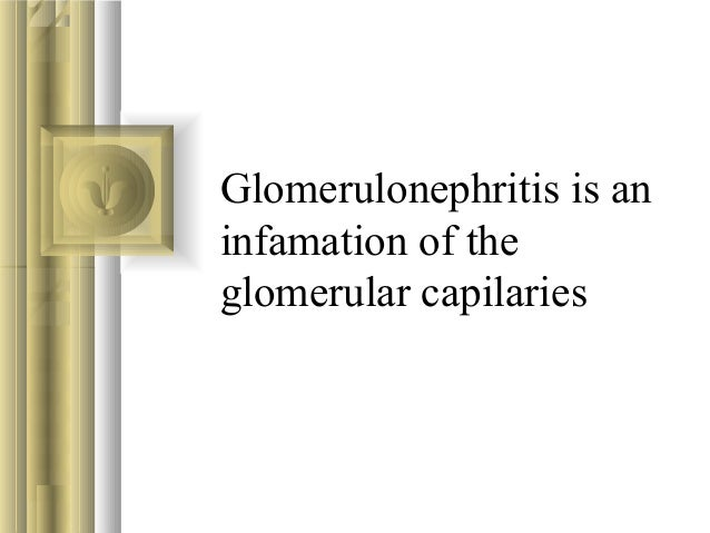 Glomerulonephritis is an infamation of the glomerular capilaries