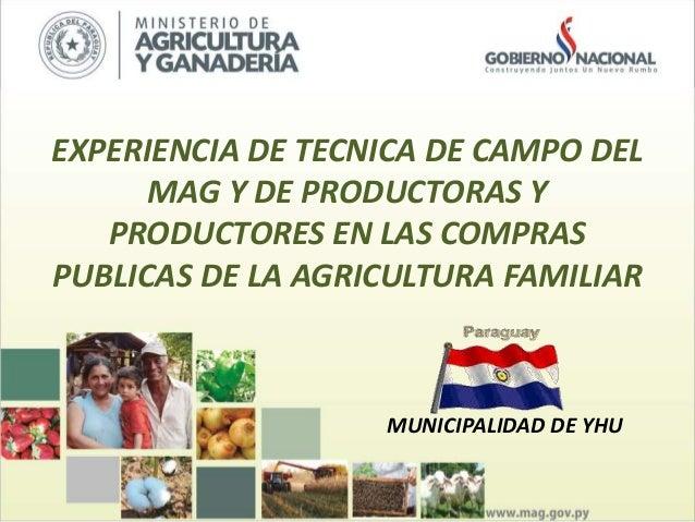 EXPERIENCIA DE TECNICA DE CAMPO DEL MAG Y DE PRODUCTORAS Y PRODUCTORES EN LAS COMPRAS PUBLICAS DE LA AGRICULTURA FAMILIAR ...