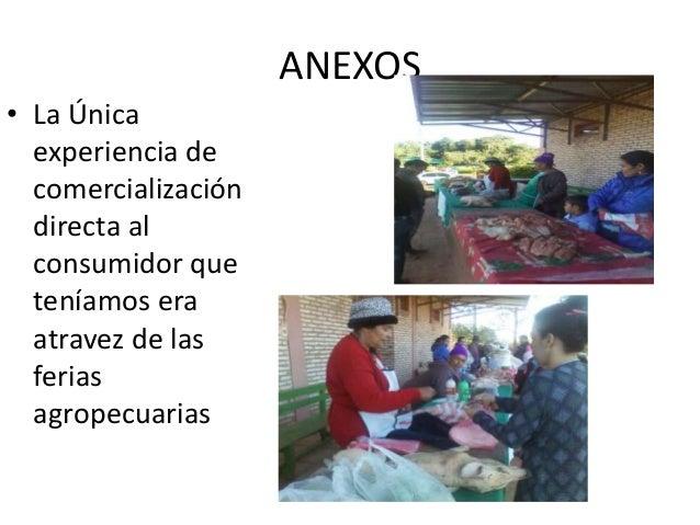 ANEXOS • La Única experiencia de comercialización directa al consumidor que teníamos era atravez de las ferias agropecuari...