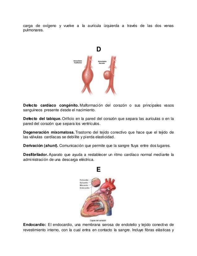 Atractivo Anatomía Ayuda Friso - Imágenes de Anatomía Humana ...