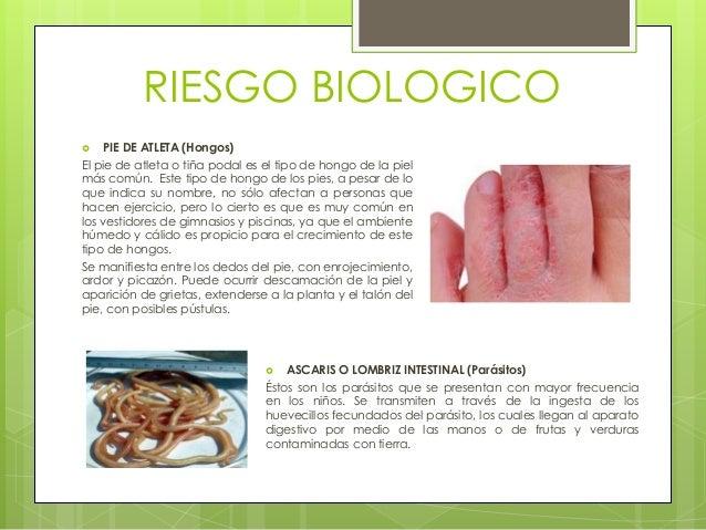El hongo de las uñas en los pies que curar el precio