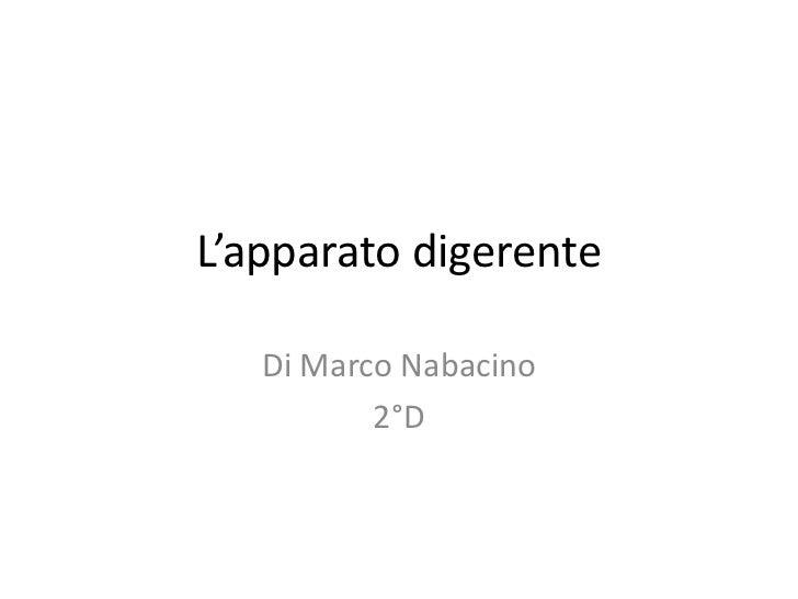 L'apparato digerente   Di Marco Nabacino          2°D