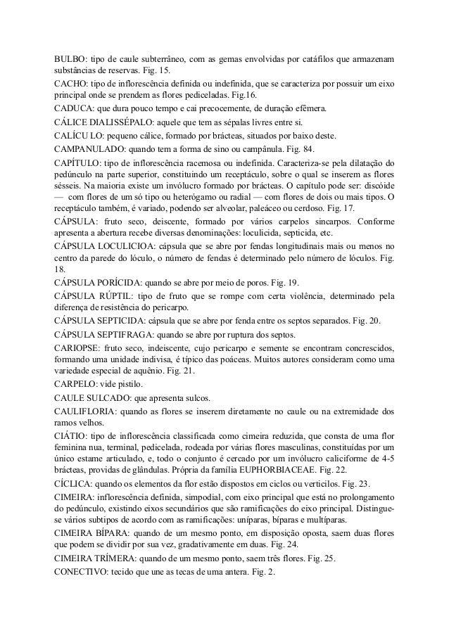 Tipos De Inflorescencia Pdf Download