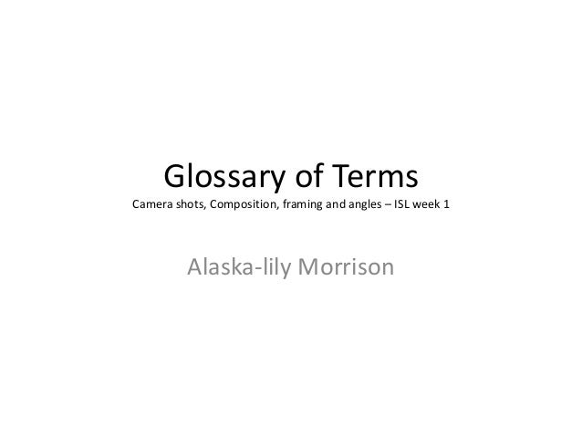 Glossary of terms- shot types