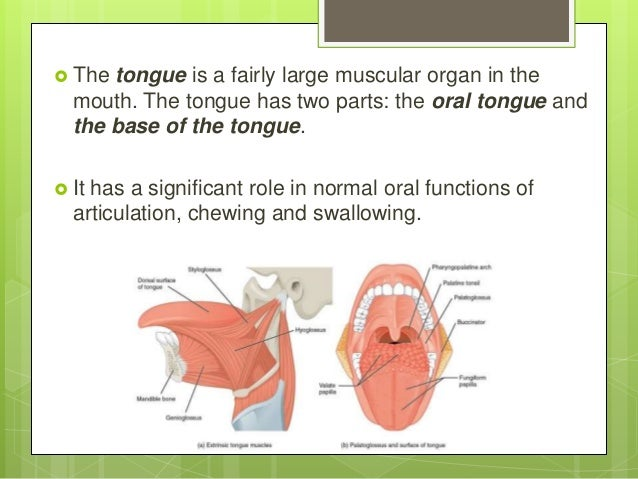 Glossectomy presentation Slide 2