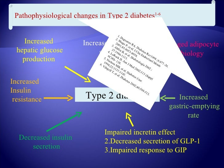The unique antidiabetic effects of  Glucagon-like peptide-1                            The lost efficacy of GIP           ...