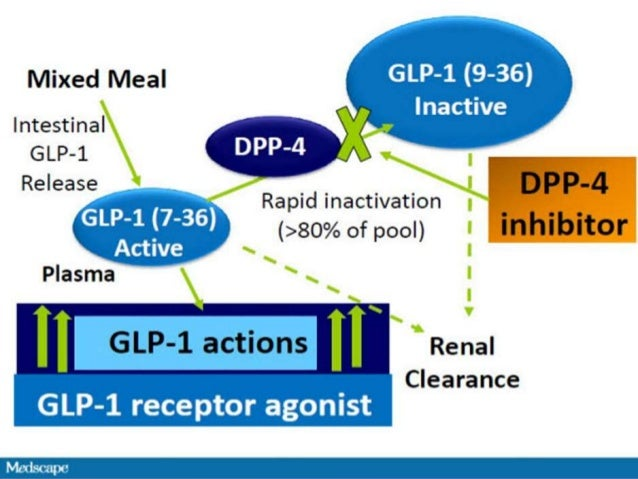 Glp1 clinical view