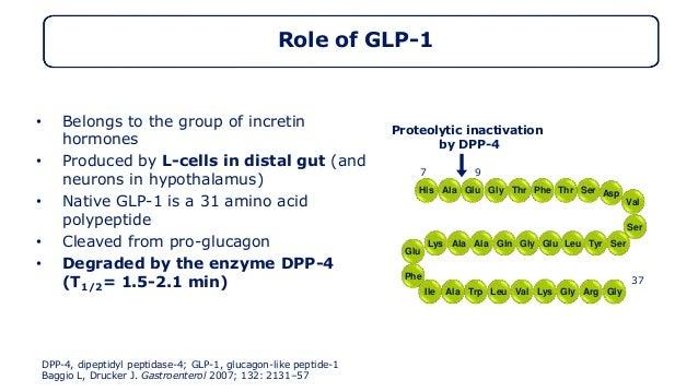 GLP1 Role : DM type 2