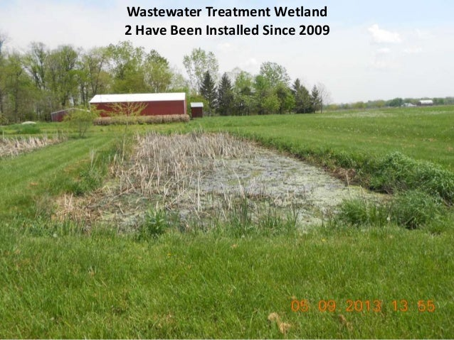 Wastewater Treatment Wetland 2 Have Been Installed Since 2009