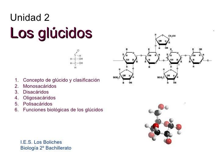 Unidad 2 Los glúcidos I.E.S. Los Boliches Biología 2º Bachillerato <ul><li>Concepto de glúcido y clasificación </li></ul><...
