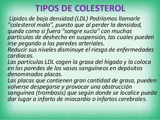 """• Este colesterol es el """"colesterol bueno""""(HDL). Se le llama """"bueno"""" porque nos protege contra las enfermedades cardiovasc..."""