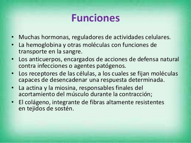 Clasificación • Proteínas simples: Producen solo aminoácidos al ser hidrolizados. • Albúminas y globulinas: Son solubles e...