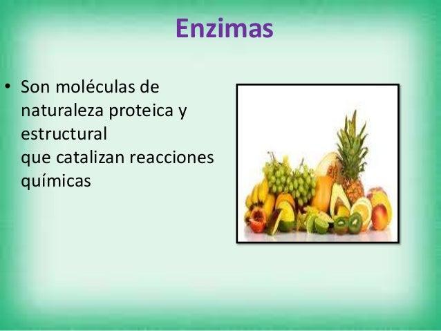 Tipos de enzimas digestivas • Lipasa: Producida por el páncreas, es la enzima encargada de la descomposición de las grasas...