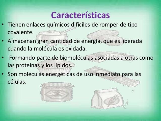Funciones • Los glúcidos desempeñan diversas funciones, siendo la de reserva energética y formación de estructuras las dos...