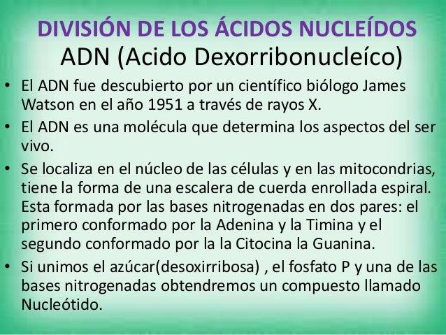ARN(Acido Ribonucleico) • Se lo encuentra en el núcleo celular formado por el grupo CHONP. • Para poder salir el ARN tiene...