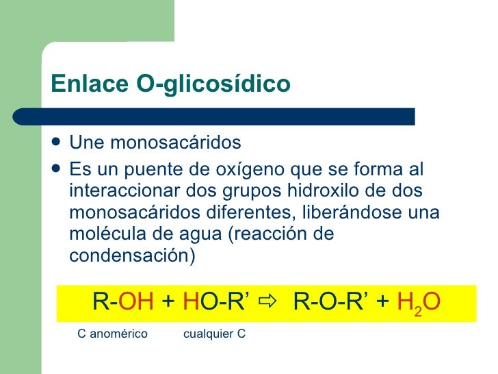 Enlace O-glicosídico <ul><li>Une monosacáridos </li></ul><ul><li>Es un puente de oxígeno que se forma al interaccionar dos...