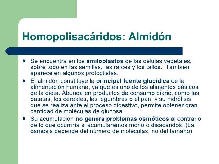 Homopolisacáridos: Almidón <ul><li>Se encuentra en los  amiloplastos  de las células vegetales, sobre todo en las semillas...