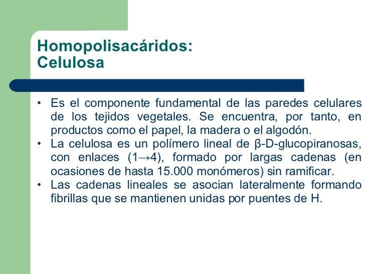 Homopolisacáridos: Celulosa <ul><li>Es el componente fundamental de las paredes celulares de los tejidos vegetales. Se enc...