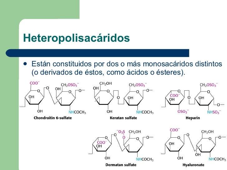Heteropolisacáridos <ul><li>Están constituidos por dos o más monosacáridos distintos (o derivados de éstos, como ácidos o ...