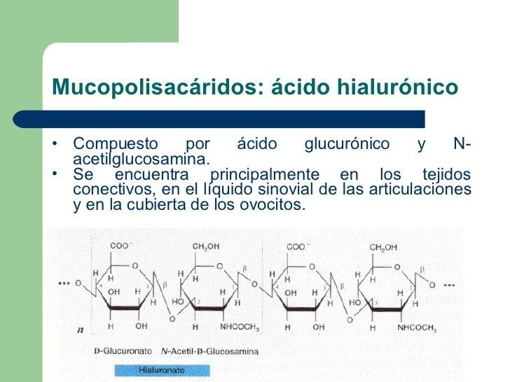 Mucopolisacáridos: ácido hialurónico <ul><li>Compuesto por ácido glucurónico y N - acetilglucosamina.  </li></ul><ul><li>S...