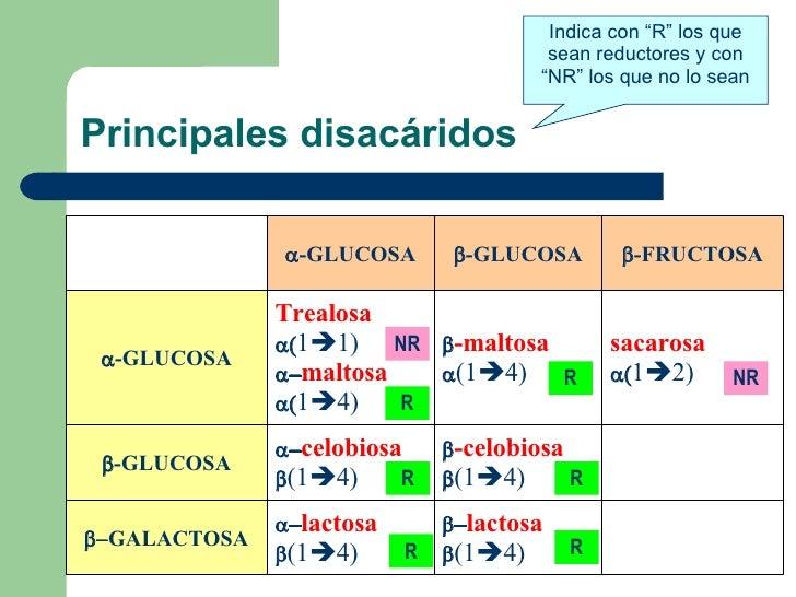 """Principales disacáridos Indica con """"R"""" los que sean reductores y con """"NR"""" los que no lo sean NR NR R R R R R R  lactosa ..."""