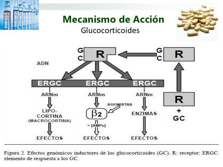 corticosteroides pdf