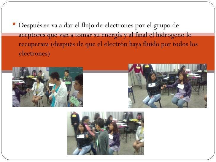  Después se va a dar el flujo de electrones por el grupo de  aceptores que van a tomar su energía y al final el hidrogeno...
