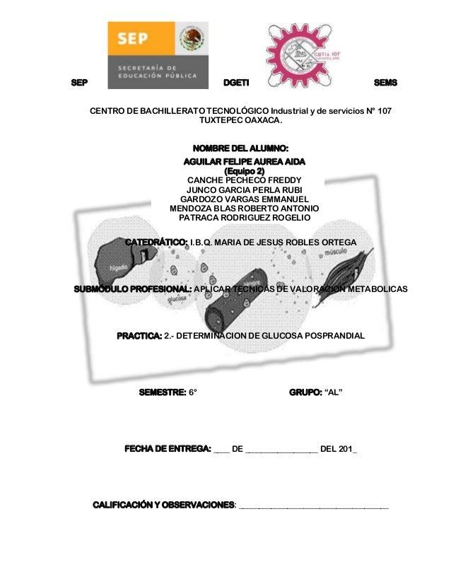 SEP                                DGETI                             SEMS      CENTRO DE BACHILLERATO TECNOLÓGICO Industri...