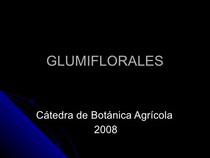 GLUMIFLORALES Cátedra de Botánica Agrícola  2008