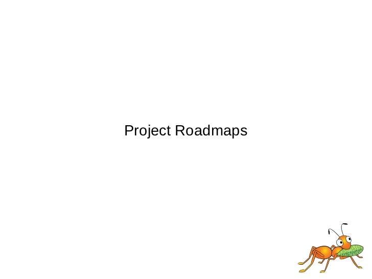 Project Roadmaps