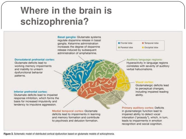 apa research papers schizophrenia This contradicts other studies that have found more psychotic disorders in  marijuana users  this study, published in psychology of addictive behaviors,   like bipolar disorder or schizophrenia or if it's the other way around,.