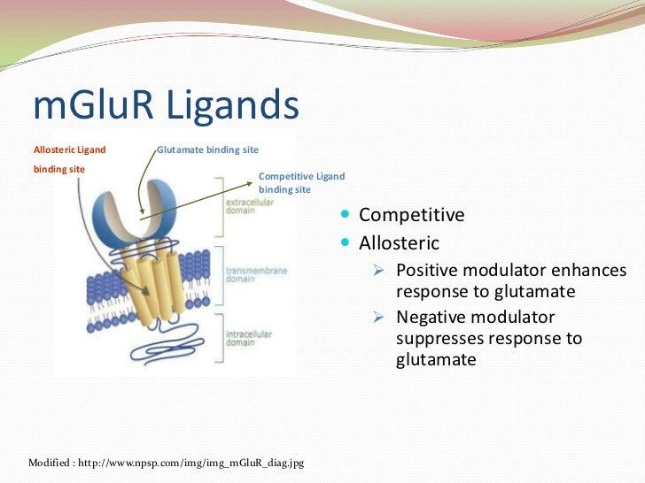 mGluR Ligands<br />Glutamate binding site<br />Allosteric Ligand <br />binding site<br />Competitive Ligand binding site<b...