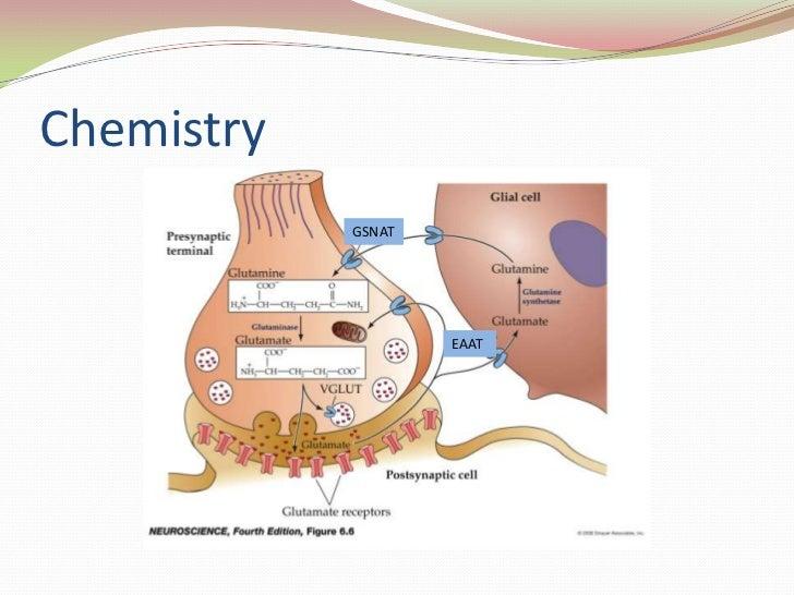 Chemistry<br />GSNAT<br />EAAT<br />