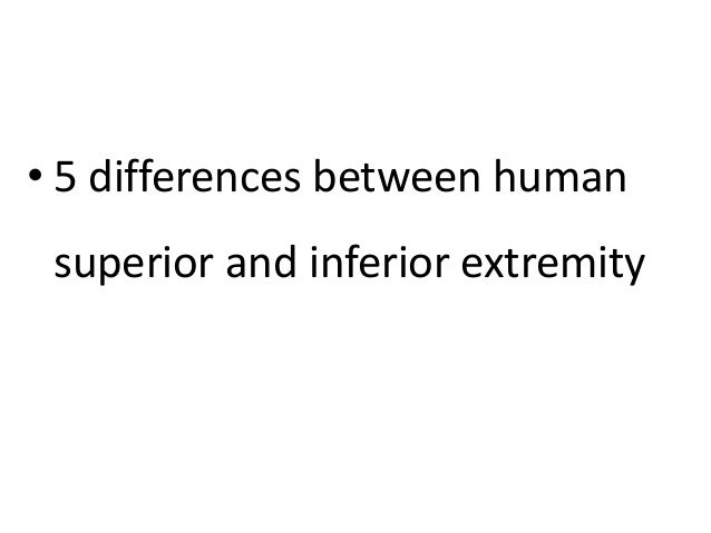 • 5 differences between human superior and inferior extremity
