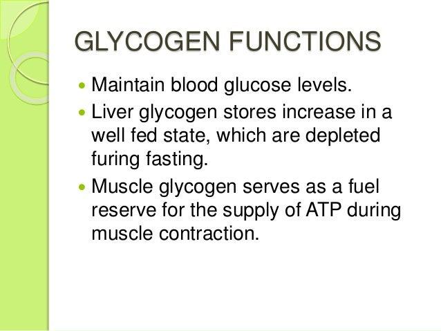 Increase muscle glycogen