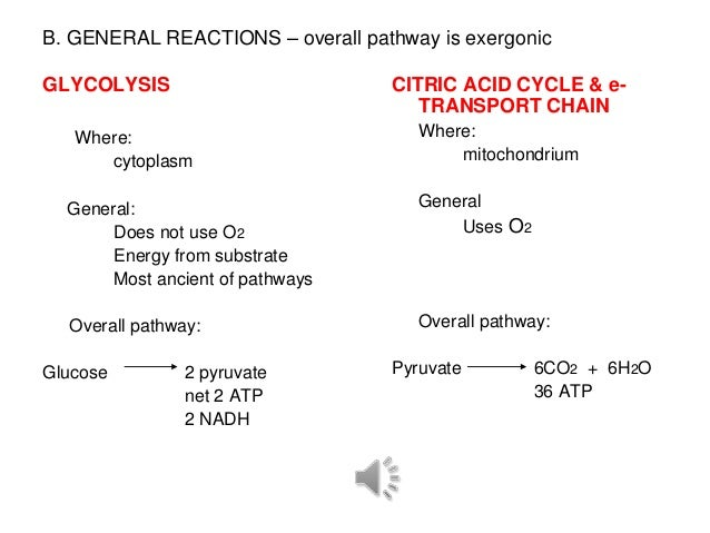 B. GENERAL REACTIONS – overall pathway is exergonicGLYCOLYSIS                        CITRIC ACID CYCLE & e-               ...