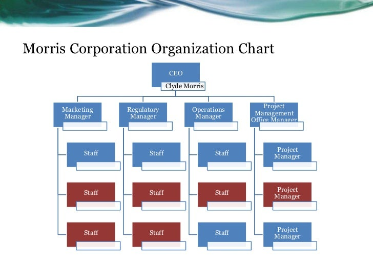 Original Project Management Office Organizational Structure