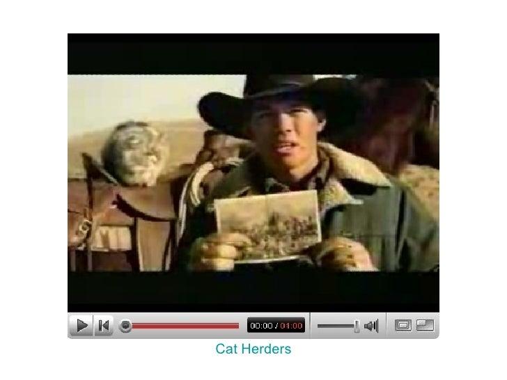 Cat Herders